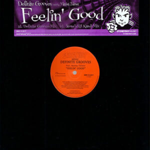 DEFINITIVE GROOVES feat MARISA TURNER - Feelin Good
