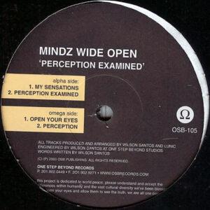 MINDZ WIDE OPEN - Perception Examined