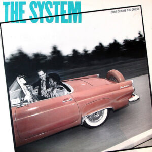 THE SYSTEM – Don't Disturb This Groove