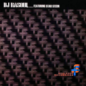 DJ RASOUL feat STAR STERN - Reality Remix