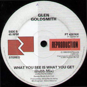 GLEN GOLDSMITH – What You See Is What You Get