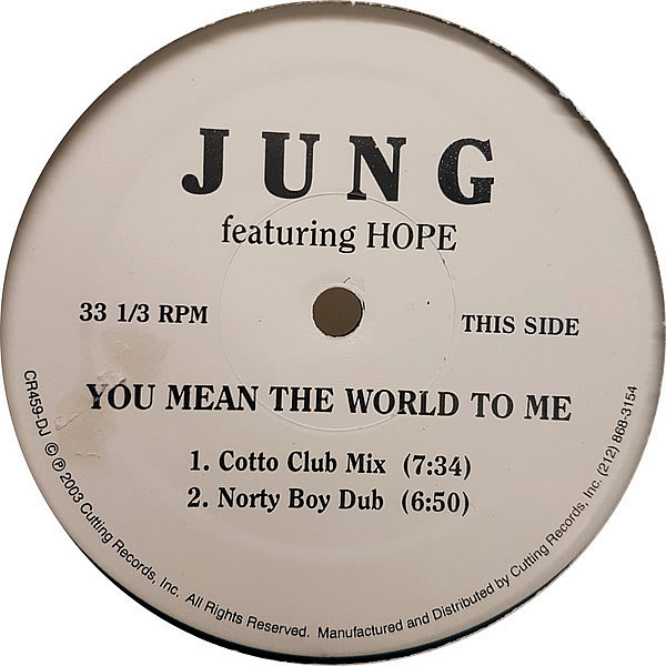 JUNG feat HOPE - You Mean The World To Me