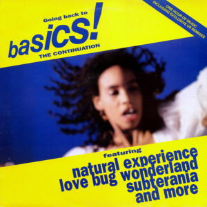 VARIOUS - Going Back To Basics The Continuation