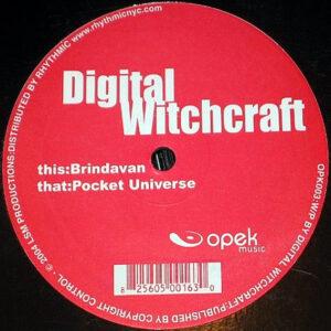 DIGITAL WITCHCRAFT - Brindavan/Pocket Universe