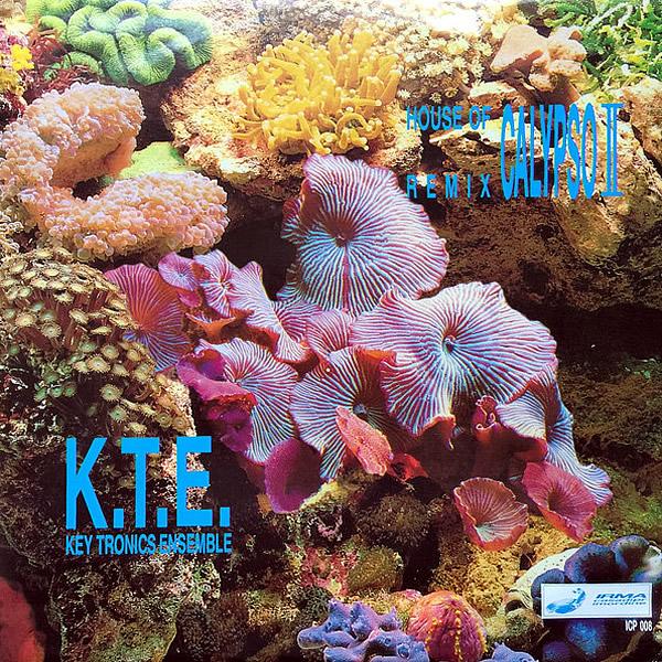 K.T.E. KEY TRONICS ENSEMBLE - House Of Calypso Remix