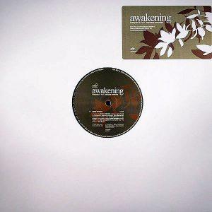 FRANCOIS K feat BARBARA MENDES - Awakening